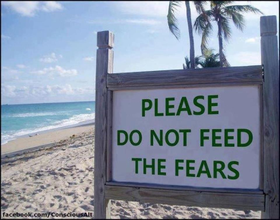 dont-feed-the-fears-1